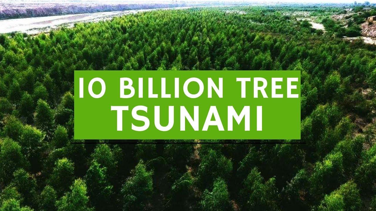 10 BILLION TREE TSUNAMI - #Plant4Pakistan - 2/9/18   NPTV - YouTube