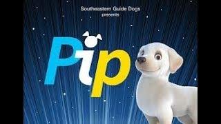 Щенок спасатель Pip. Мультфильм про щенков. Собака Pip поводырь