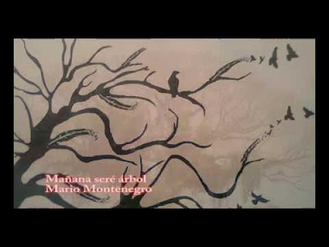 Mañana seré árbol de Mario Montenegro