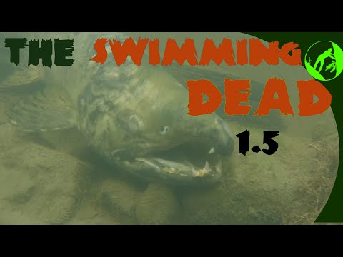 The Swimming Dead - Director's Cut (the plight of the Pacific salmon)