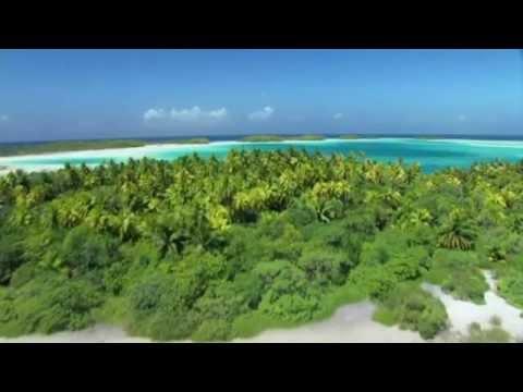 BBC: Тайны Тихого океана (русский трейлер)
