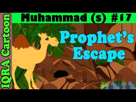 Prophet's escape | Muhammad  Story Ep 17 || Prophet stories for kids : iqra cartoon Islamic cartoon