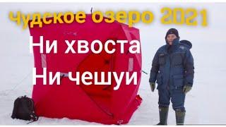 Зимняя рыбалка январь 2021 Чудское озеро