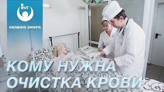 Кому показан плазмаферез (очистка крови) от вирусов и болезней. Клиника Genesis Dnepr