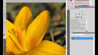 Как сделать фон черно-белым а объект цветной?(Что бы снять выделение В конце видео нажимаем Ctrl+D., 2011-10-08T18:04:45.000Z)