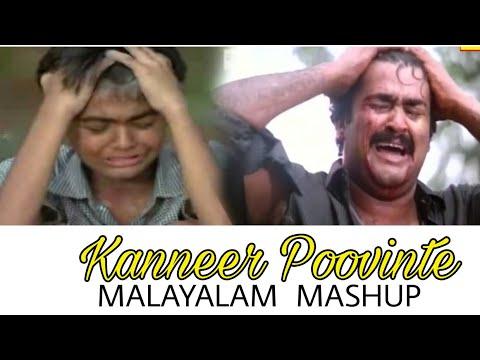 Mohanlal And Pranav Mohanlal | Kanneer Poovinte Kavilil Thalodi |Whatsapp Status |Kireedam