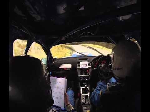 Alex Allingham/Chris Williams - Viking Motorsport Mid Wales Stages 2014 - SS2 Myherin - Onboard
