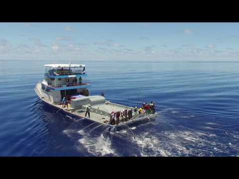 Sustainable Eco-Friendly Fishing In The Maldives (2016)