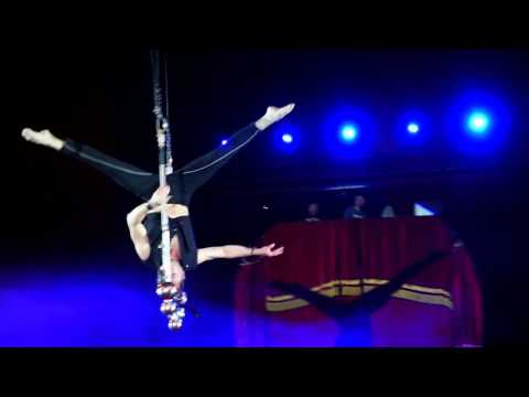 Solo Trapeze Washington Circus Aerial Act Variety Show