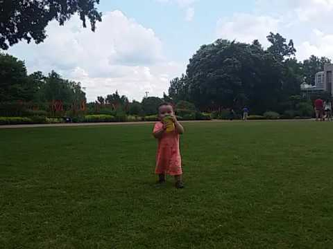 Playing on the Great Lawn