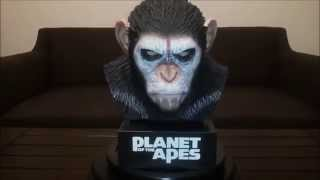 Planet of the Apes: CAESAR'S WARRIOR BLU-RAY COLLECTION