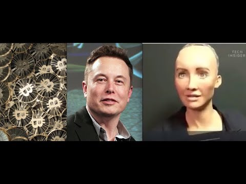 Has elon musk invested in bitcoin code