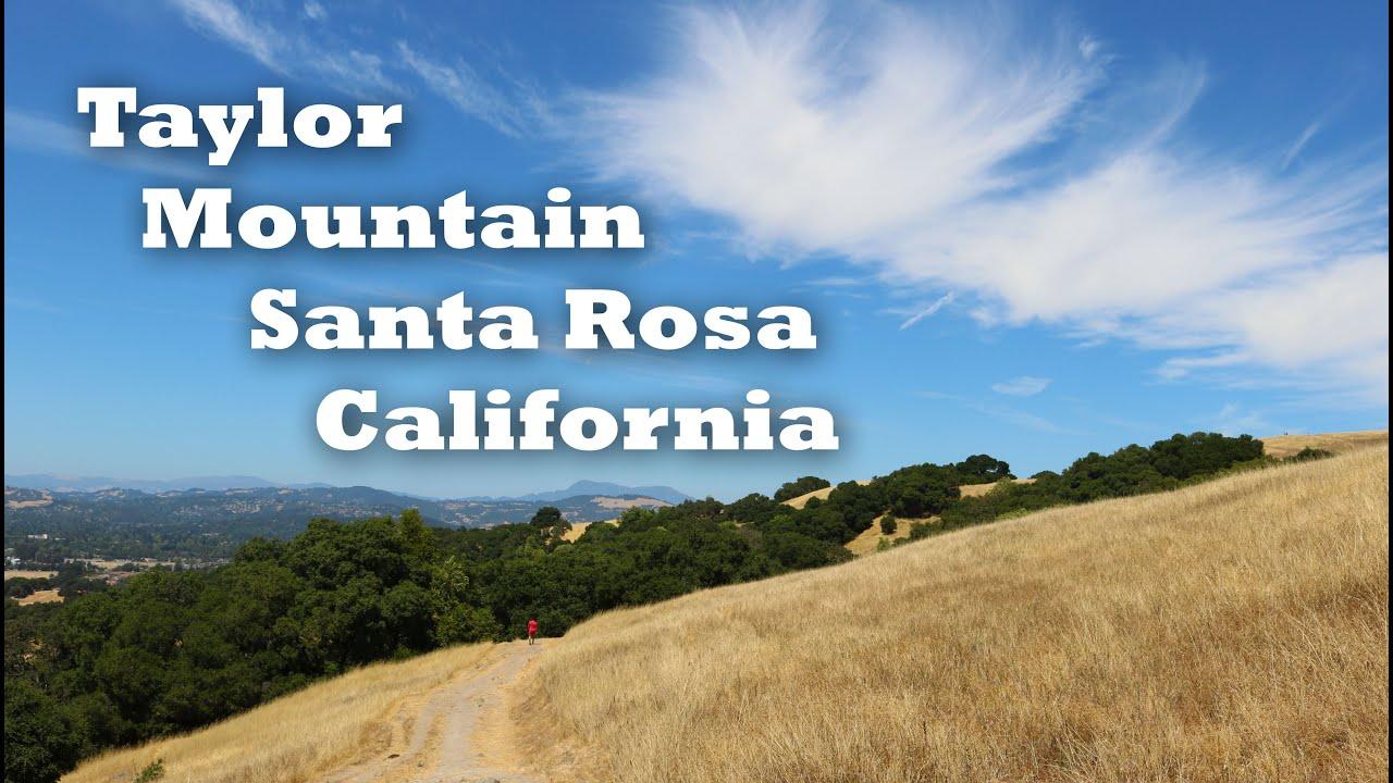 Hiking Taylor Mountain Regional Park in Santa Rosa California