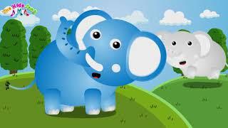 เพลงช้าง ช้าง ช้าง พี่นุ่น น้องภูมิ เพลงเด็ก The Kids Song