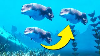 *NEW * OTTERS ARE HERE! PLANET ZOO Meets Aquarium Tycoon   Among Ripples: Shallow Waters Gameplay