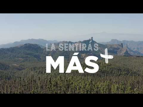 Los productos turísticos de Gran Canaria invitan a cuidarse y soñar con el futuro a través de un viaje sensorial por su naturaleza