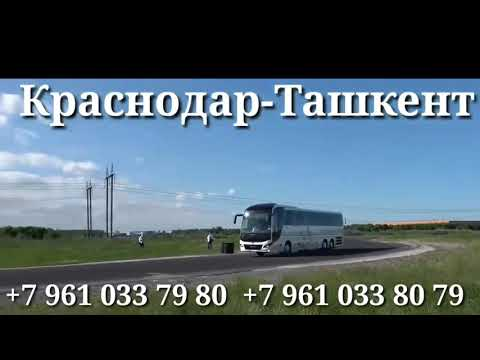 Краснодар-москва санкт-петербург Ташкент Худжанд Душанбе
