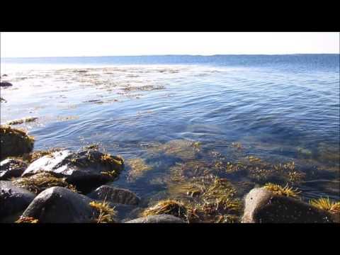 Nova Scotia Soft Ocean Waves Scene