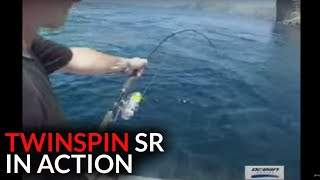 TwinSpin SR 12 in Action