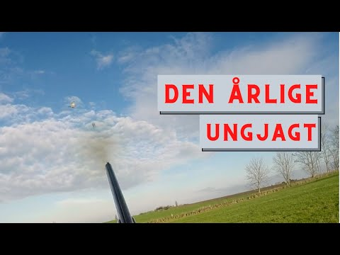 Hunting in Denmark | Den Årlige Ungjagt