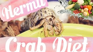 Hermit Crab Diet: What I Feed My Crabs Daily 🐚🦀