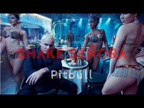 Shake Señora - Pitbull feat. T-Pain & Sean Paul (Lyric Video)