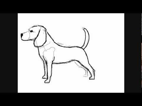 Imagenes de perros a lapiz faciles  Imagui