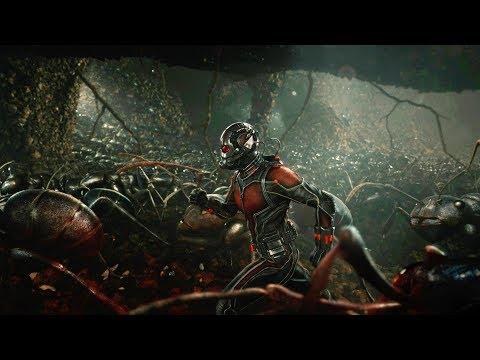 Ant Man - Hero