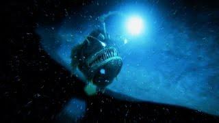 ark survival evolved penguin angler spotlight trailer