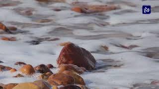 """مبادرة """"يكفينا بحراً ميّتاً واحداً"""" للحد من تلوث البئية البحرية"""