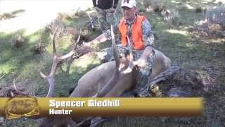 Member Video Contest Winner: Spencer Gledhill, Utah Elk