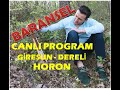 Baransel - Horon / Gİresun - Derelİ DÜĞÜnÜ