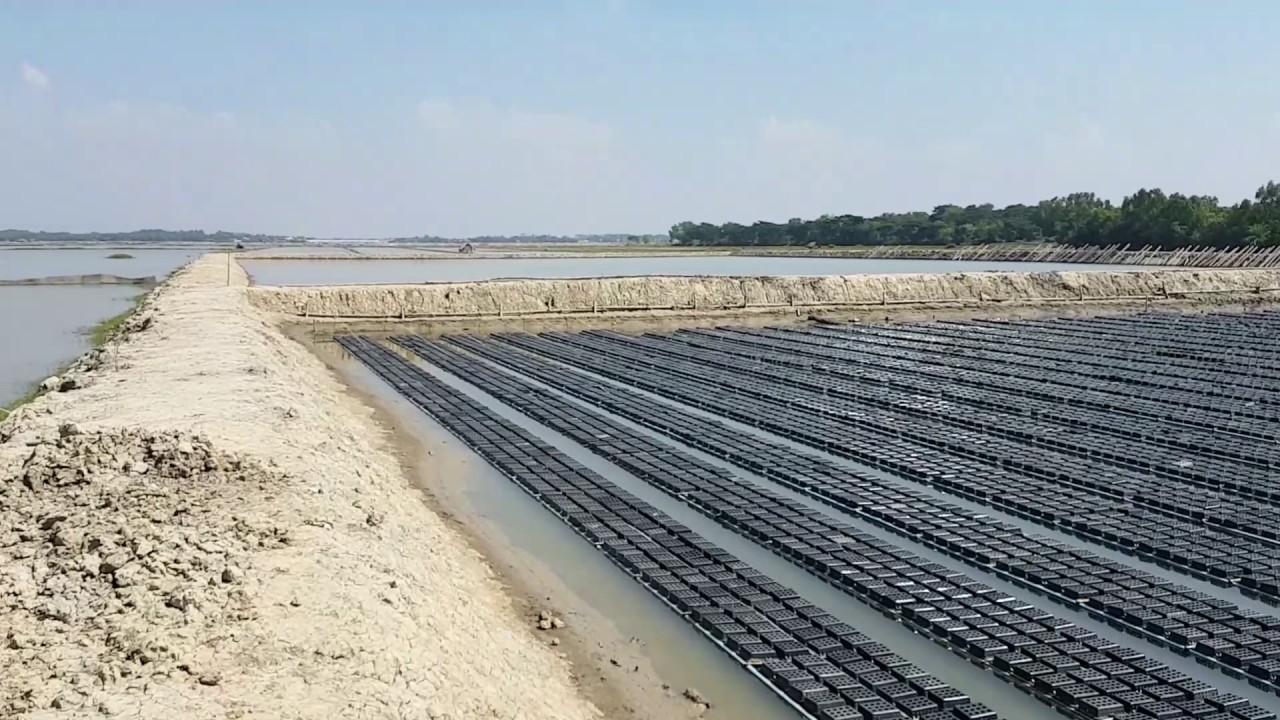 crab farming in bangladesh Farming in bangladesh abdul rashid 81 videos 15,773 views  juwel's pigeon farm sylhet, bangladesh, video clip-1 by juwel choudhury 17:18 play next play now.