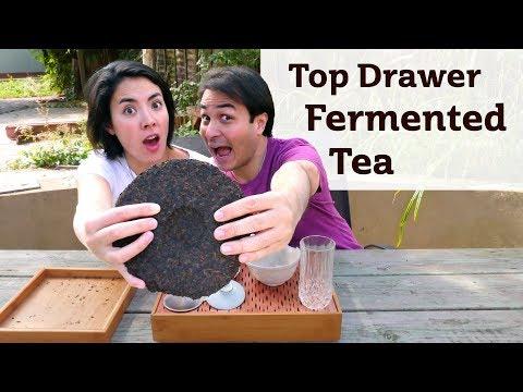 Top Drawer Fermented Tea