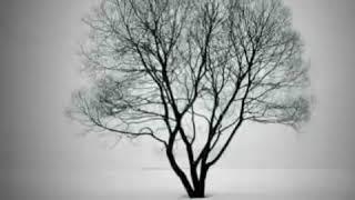 اغنية ناصيف زيتون (مجبور)مع كلمات انشالله يعجبكون😍❤