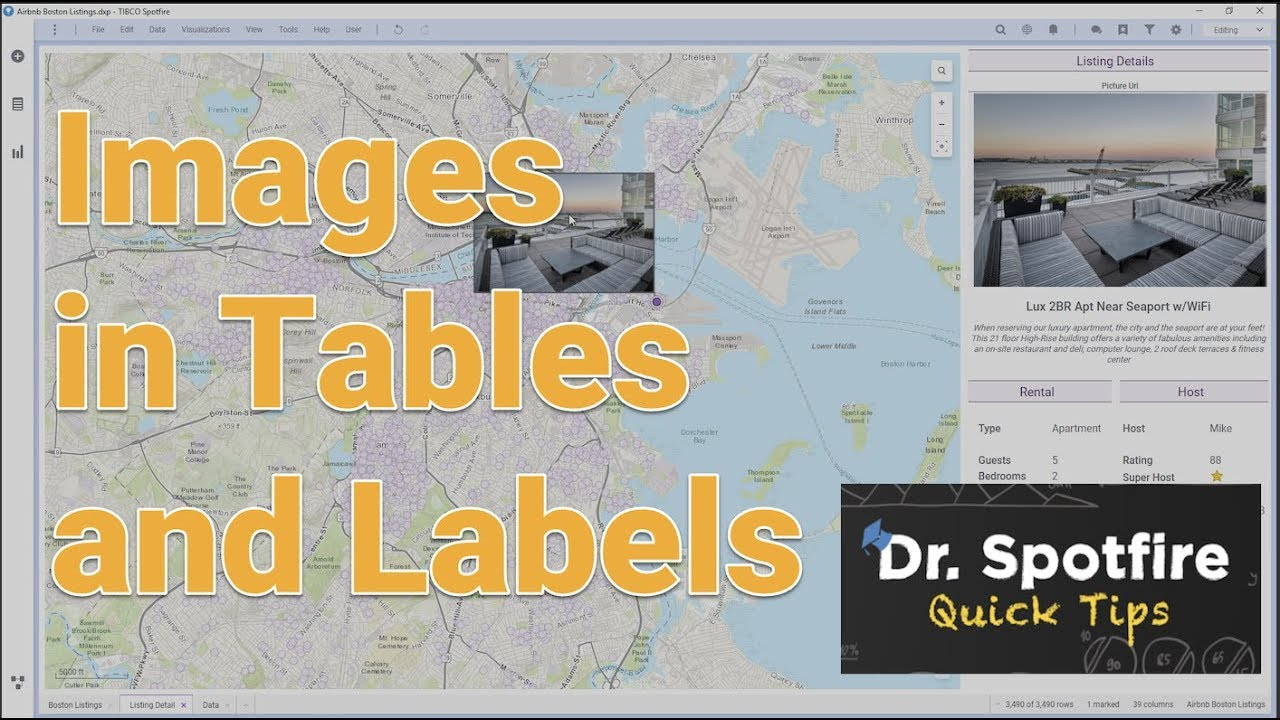 Using Images in Spotfire Chart Labels and Tables