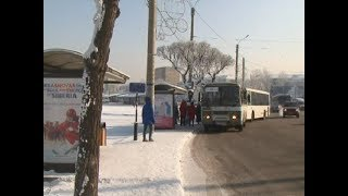 Транспортные лайфхаки: как не замерзнуть на остановке и в автобусе?