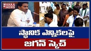 ఏపీలో స్థానిక ఎన్నికల సందడి: CM Jagan Special Focus On AP Local Body Elections   MAHAA NEWS