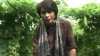 Dòng Đời Trân Nhật Quang
