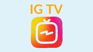 apple Лучшие видео животных инстаграм, iphone, ipad canon nikon cool money mac apple