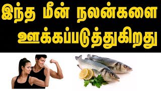 Benefits Of Tilapia Fish  - Tamil Health Tips