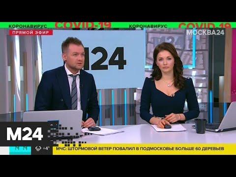 Видео: Чемпионат Англии по футболу приостановили из-за коронавируса - Москва 24