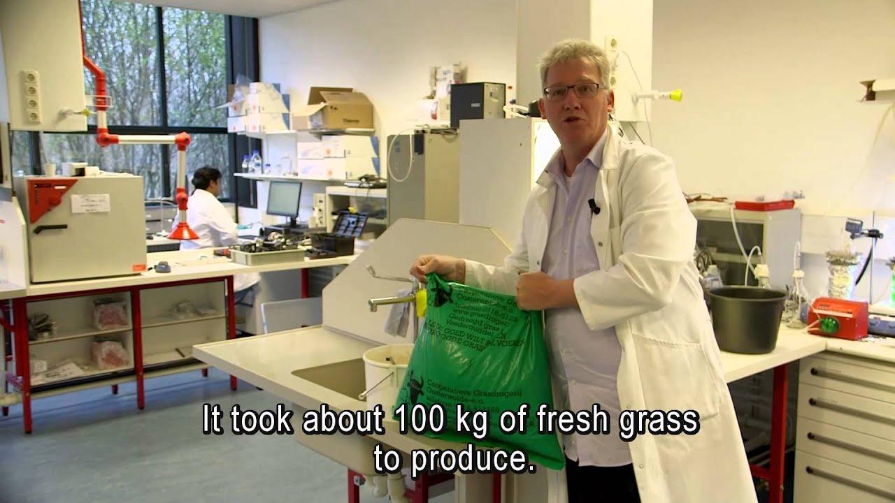 Proeffabriek voor groene economie