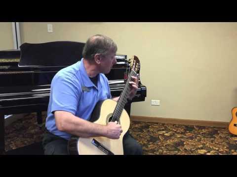 Plum Grove Music Store - New Ventura Classical Guitars