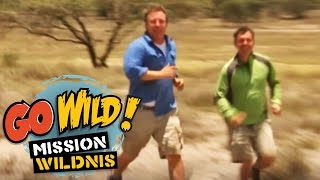 Repeat youtube video Go Wild! Mission Wildnis - Der feuerspeiende Riese (Trailer) - Folge 14