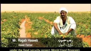 ACDI/VOCA-Egypt: Integrating Small Farmers into the Value Chain, Part 2 of 4