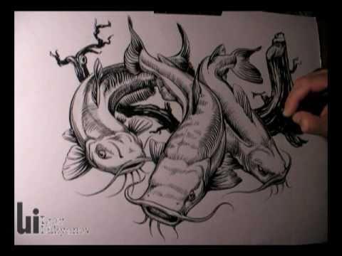 drawing catfish youtube