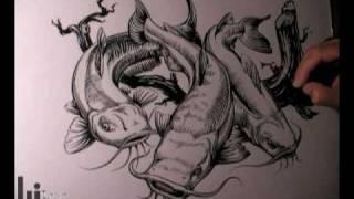 Drawing Catfish