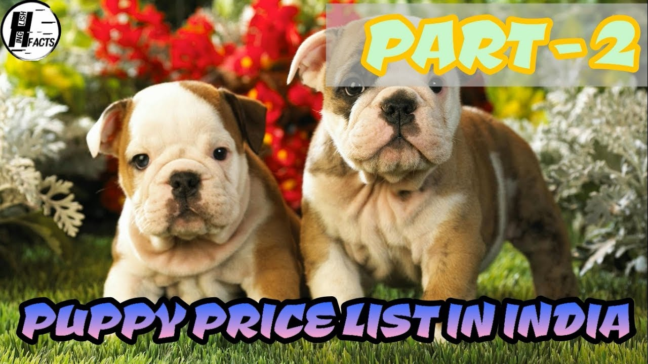 dog price list in india | part - 2 | price list | hinglish facts