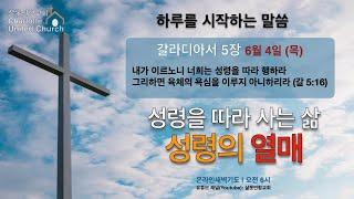 6월 4일 (목) 온라인 새벽기도-갈라디아서 5장